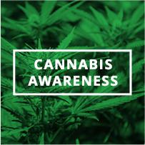 Cannabis Awareness